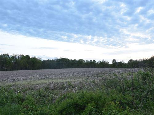 Pleasant View Dr - 59 Acres : Lisbon : Columbiana County : Ohio