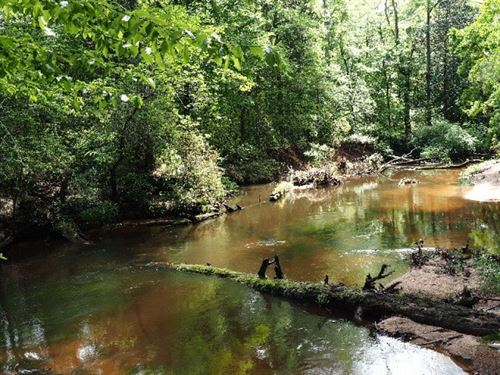Hunting Timber Land 328 Acres South : Magnolia : Pike County : Mississippi
