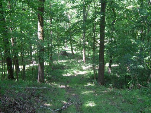 Utica Mississippi Land for Sale, 20 - 50 Acres : LANDFLIP