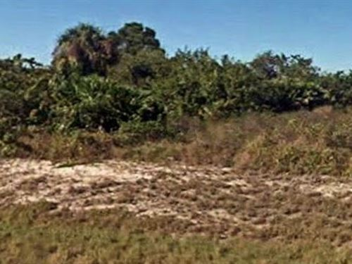 Hendry County, Fl $20,000 Neg : Port Labelle : Hendry County : Florida