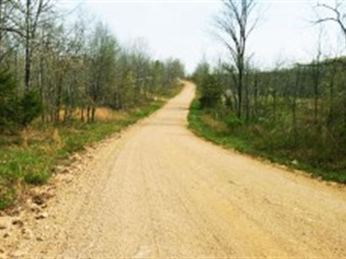 Cozy 1 Acre For Rv, Camper Or Cabin : Peace Valley : Howell County : Missouri
