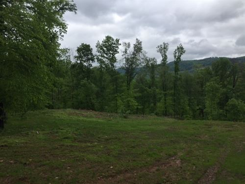 6.2+/-Acres Wooded With Views : South Pittsburg : Marion County : Tennessee