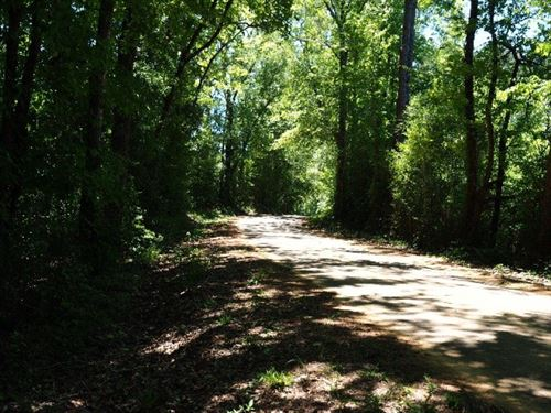 Hunting Land 13 Acres Southwest Mis : Magnolia : Pike County : Mississippi
