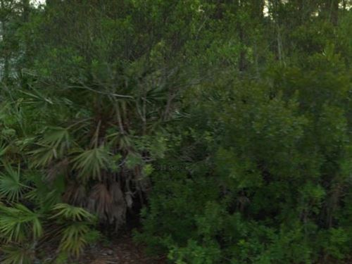Flagler County, Fl $16,000 Neg : Palm Coast : Flagler County : Florida