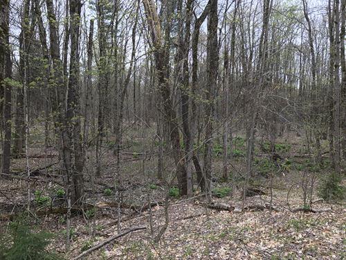 McCaw Acres : Redfield : Oswego County : New York