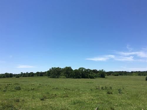45 Acres Highway 30 : Huntsville : Walker County : Texas