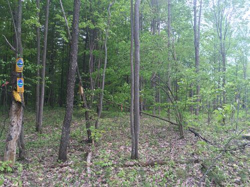 St. Regis Hunting Lands : Brasher Falls : Saint Lawrence County : New York