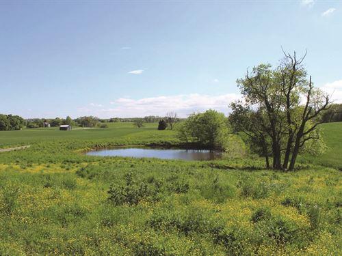 Smiths Grove Land & Farm Auction : Smiths Grove : Warren County : Kentucky