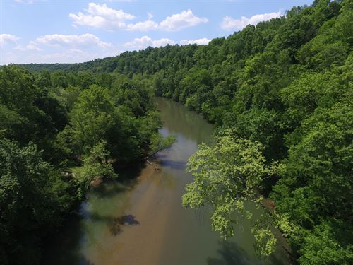 11 Acres Near Buffalo River : Linden : Perry County : Tennessee