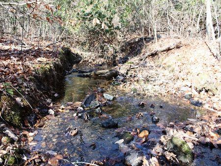 A135- 28 Acres : Heflin : Randolph County : Alabama