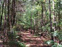 Gregg Shoals Road : Elberton : Elbert County : Georgia
