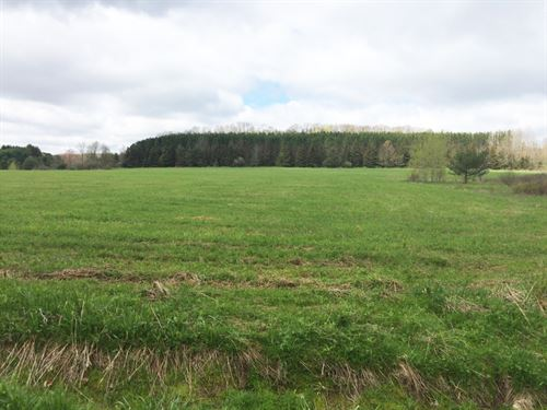 50 Acres Farmland In Friendship Ny : Friendship : Allegany County : New York