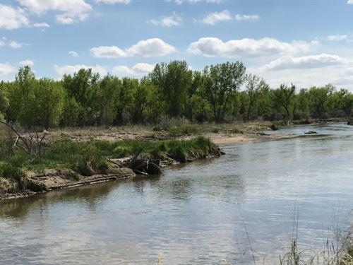 North Platte River Wildlife : Sutherland : Lincoln County : Nebraska