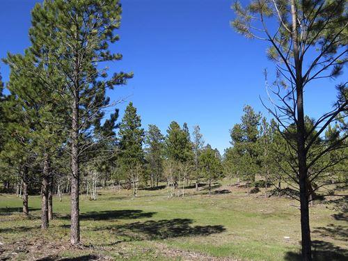 Elliott Acreage : Four Corners : Weston County : Wyoming