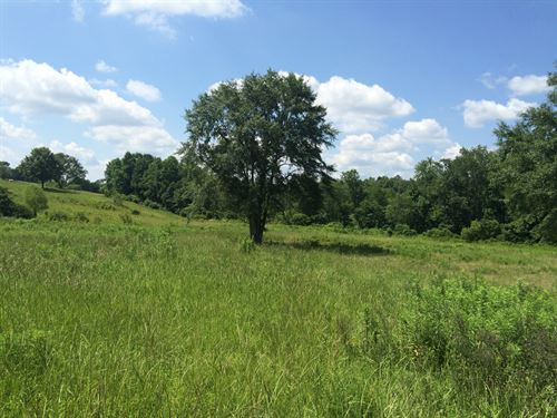 25 Ac Featuring Hardwoods, Fields : Troy : Pike County : Alabama