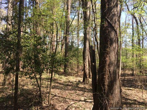 Riverfront Acreage : Carthage : Leake County : Mississippi
