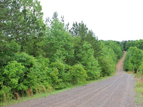 Secluded Wooded Paradise : Dover : Stewart County : Tennessee
