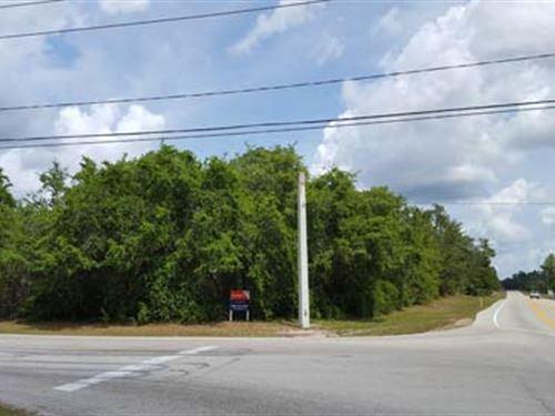 Multi-Seller Auction - 7105 : Deltona : Volusia County : Florida