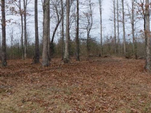 48 Acres Wildwood Road In Warren Co : McMinnville : Warren County : Tennessee