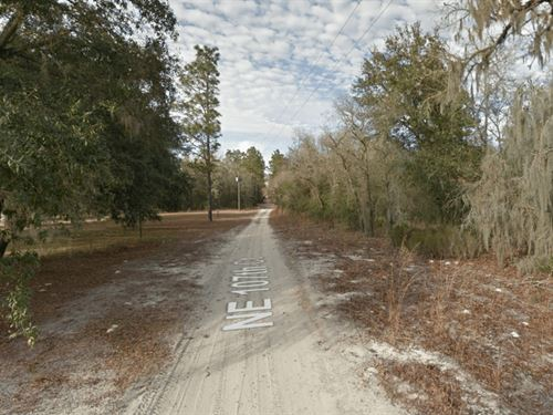 1.25 Acre High & Dry Mobile Homelot : Bronson : Levy County : Florida