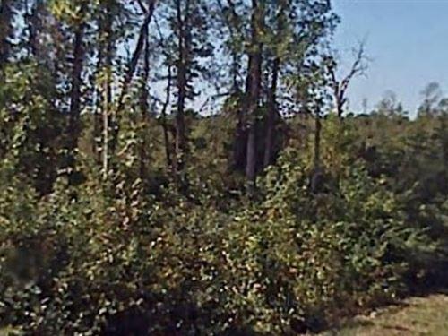 Moore County, Nc $400,000 Neg : Cameron : Moore County : North Carolina