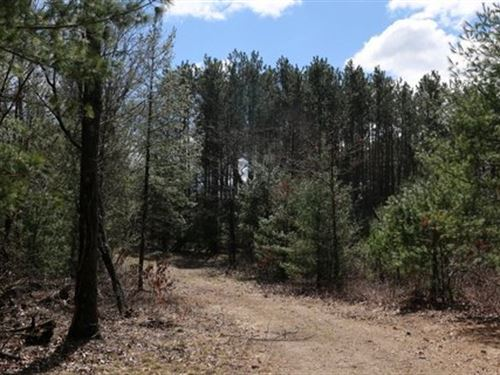 Rare Opportunity Mature Hardwoods : Arena : Iowa County : Wisconsin