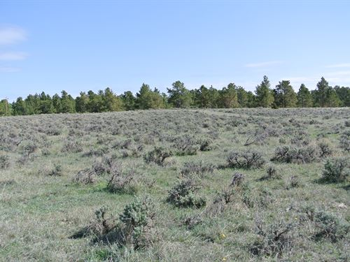Keyhole Development Opportunity : Pine Haven : Crook County : Wyoming