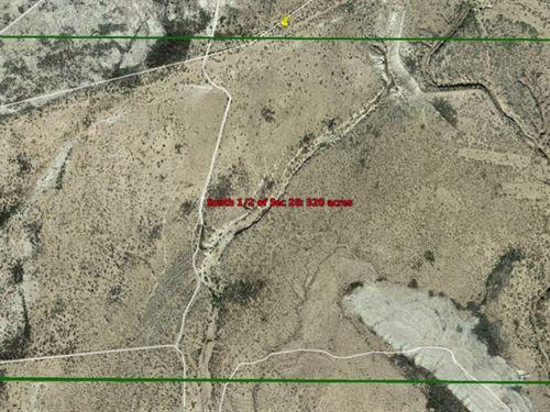 320 Acres in Alpine, Texas : Alpine : Brewster County : Texas