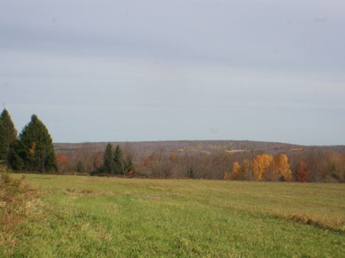 14 Acres Building Site Ellington Ny : Ellington : Chautauqua County : New York