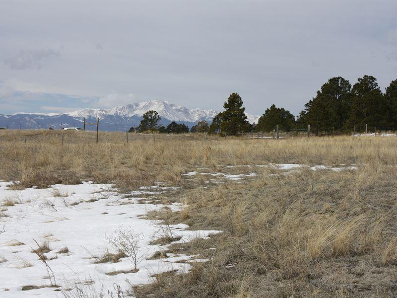 Land For Sale Colorado Springs >> Black Forest Acreage Land For Sale Colorado Springs El Paso