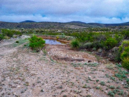 20 Acres In The High Desert : Terlingua : Brewster County : Texas