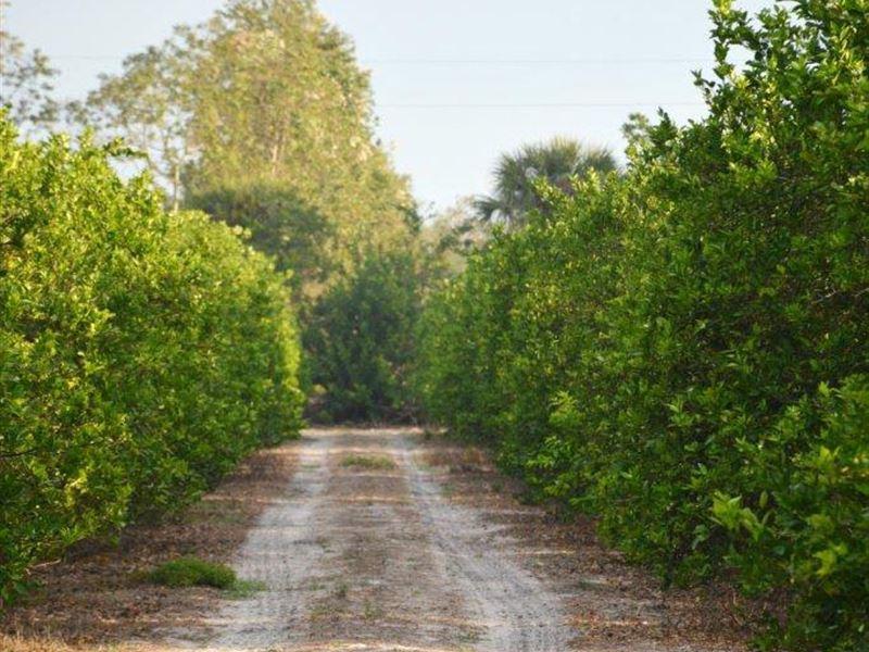 Vero Beach J4 : Vero Beach : Indian River County : Florida