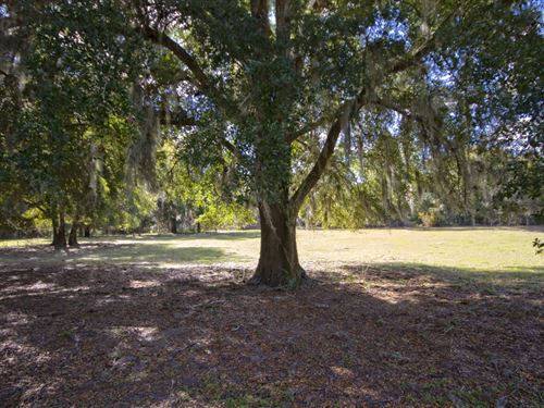 Land Liquidation - Orlando Area : Groveland : Lake County : Florida