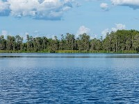 Lakefront Liquidation Orlando : Groveland : Lake County : Florida