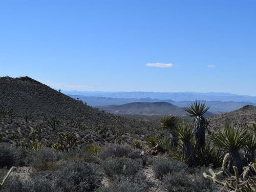 Mtn View Land Liquidation : Dolan Springs : Mohave County : Arizona