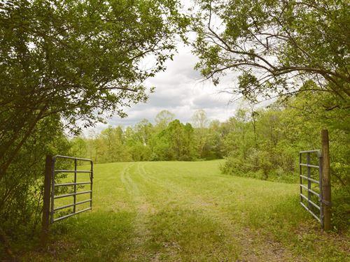 Tr 215 - 15 Acres : New Lexington : Perry County : Ohio