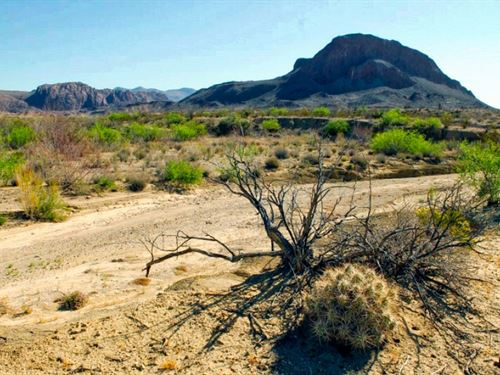 39 Acres With Wet Weather Creek : Terlingua : Brewster County : Texas