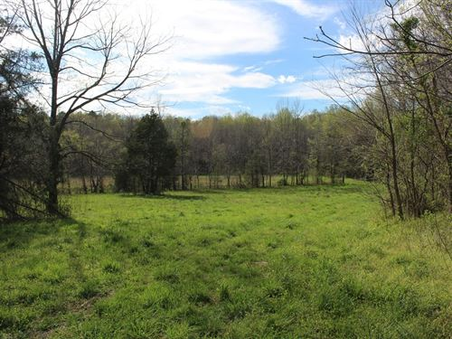 Gorgeous Rural Property Auction : Gibsonville : Guilford County : North Carolina