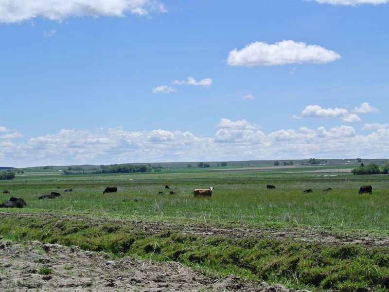 Missouri Valley Ranch : Riverton : Fremont County : Wyoming