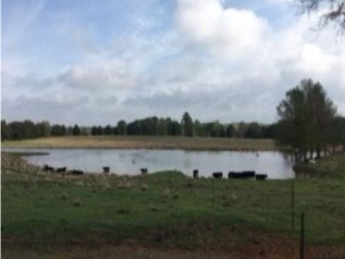 56 Acres In Madison County : Canton : Madison County : Mississippi