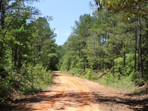 150 Acres In Leake County : Carthage : Leake County : Mississippi