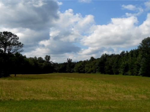 55 Acres In Neshoba County : Philadelphia : Neshoba County : Mississippi