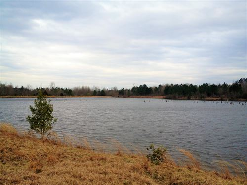 160 Acres With 25 Ac Lake : Banks : Pike County : Alabama