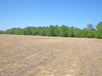 Auction - Excellent Lifestyle Farm : Lewis Twp. : Brown County : Ohio