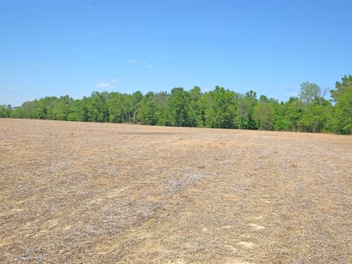 Auction - Excellent Lifestyle Farm : Lewis Twp. : Brown County : Ohio