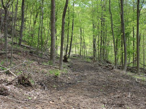 Tunnel Hill Rd - 68 Acres : Dennison : Harrison County : Ohio