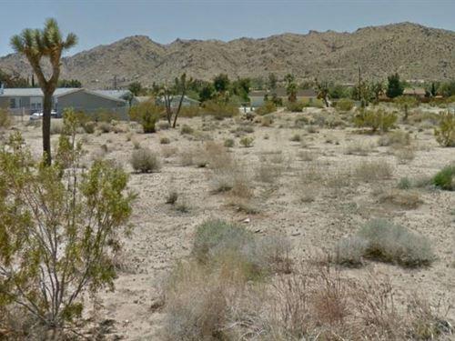 San Bernardino, Ca $37,999 Neg : Joshua Tree : San Bernardino County : California
