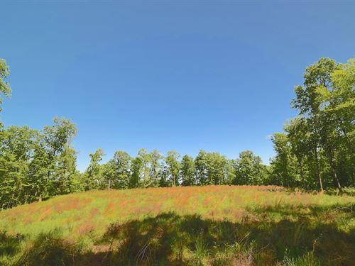 Sr 681 - 129 Acres : Reedsville : Meigs County : Ohio