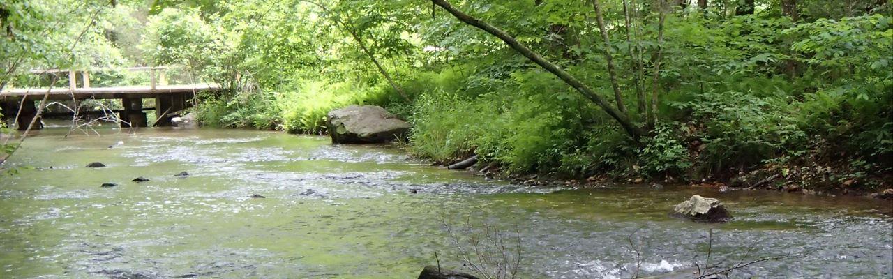 True Trout Stream - Pasture-Woods