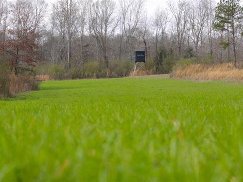 130 Acres In Copiah County : Hazlehurst : Copiah County : Mississippi